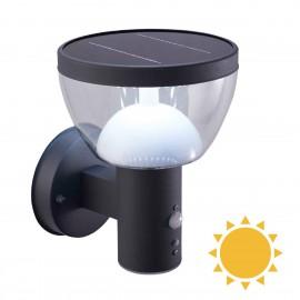 Solární svítidlo Larix PIR 90x60, 4000K